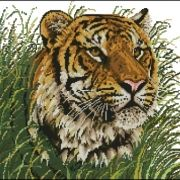 Janlynn Wildlife Series Tiger